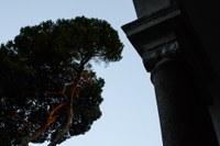 2015 11 02 ISJH Roma 2015 160030